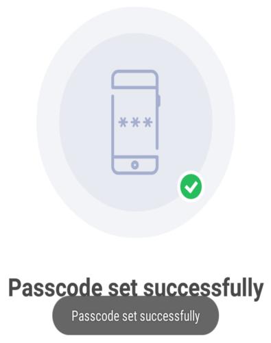 bhim passcode